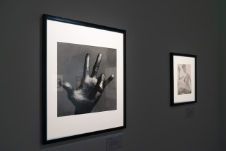 Christie´s Londýn, Irving Penn, The Hand of Miles Davis