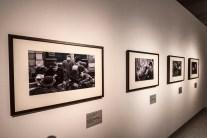 Národní galerie - výstava Záhada Čapkova koberce
