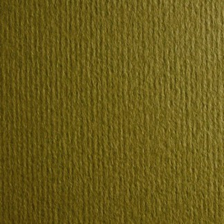 Картон цветной для пастели Murillo 810 oliva 50х70 см 190 г/м.кв. Fabriano Италия