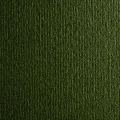 Картон цветной для пастели Murillo 811 verdone 70х100 см 190 г/м.кв. Fabriano Италия