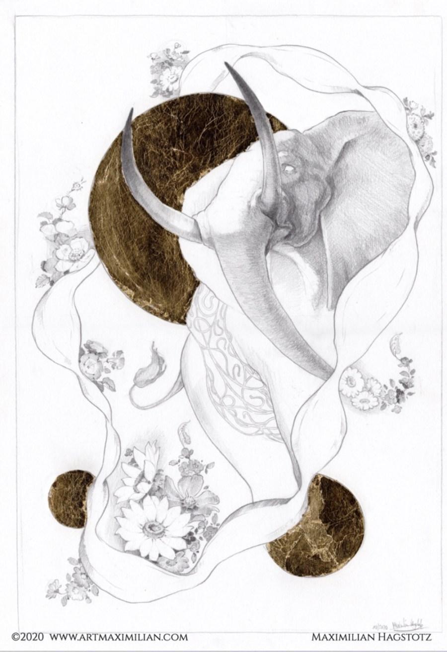 Zeichnung Grafik Neu Bleistift Gold Unikat Maximilian Hagstotz Blumen sonne Afrika Big five 5 Elefant Rüssel Stoßzähne