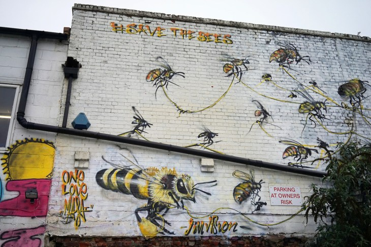 bees-10