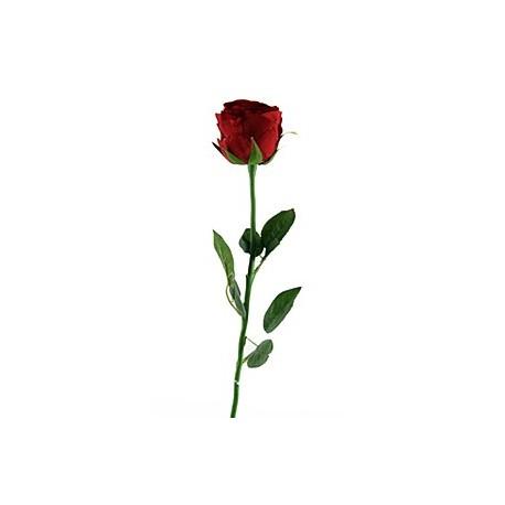 art n flower