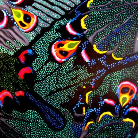 Original Animal Painting by Amy Bock   Abstract Art on Wood   Chinese Peacock Butterfly
