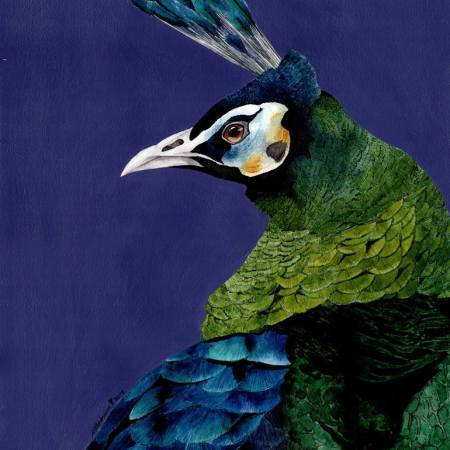 Original Animal Painting by Atthakrisna Vannason | Conceptual Art on Paper | Peacock 1