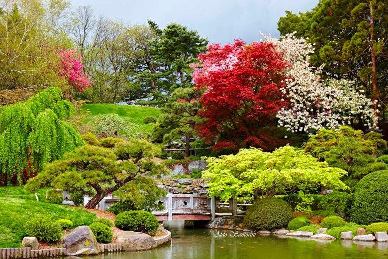Brooklyn Botanic Garden, New York