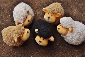 sheep-1767171_1920