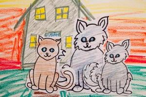 08_EM_CatStory01222013