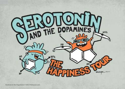 serotonin-and-the-dopamines-this-is-apparently-on-a-shirt-here-http-shirt-woot-com-offers-serotonin_original