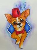 Dogtor Who Chihuahua
