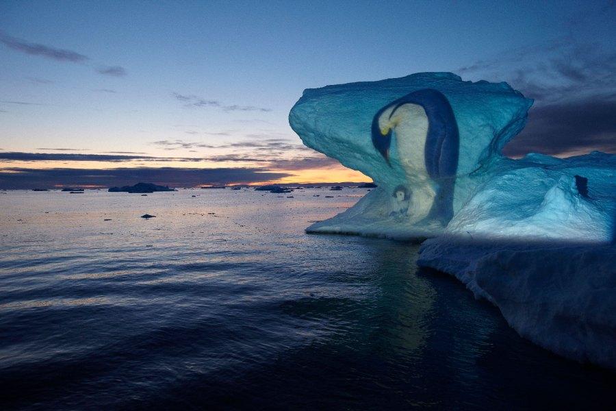 Antarktisexpeditionen 2005 und 2006