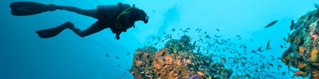 scuba diving bangka