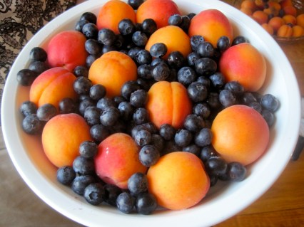 Apricot and Blueberry Pie, Art of the Pie