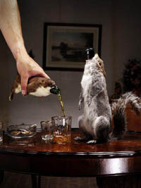 brewdog_taxidermy200