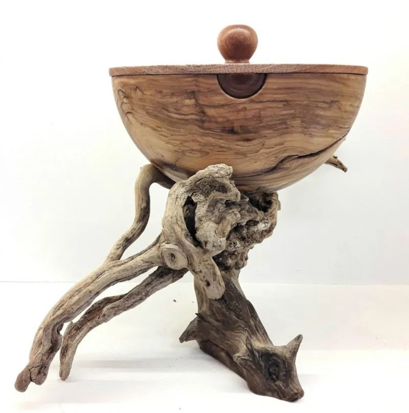 Olive woodturned bowl with drift wood base. The artist calls this piece Medusa. A creative assembly creating a driftwood base with a bowl made of olive wood. #woodturning #wood #woodturned #art #woodbowl