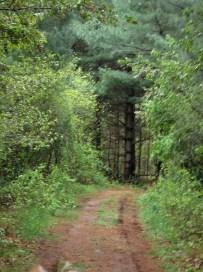 Riding Ring Trail