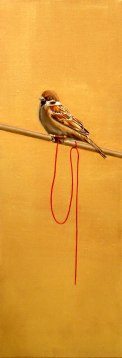 Fly Free, Sparrow