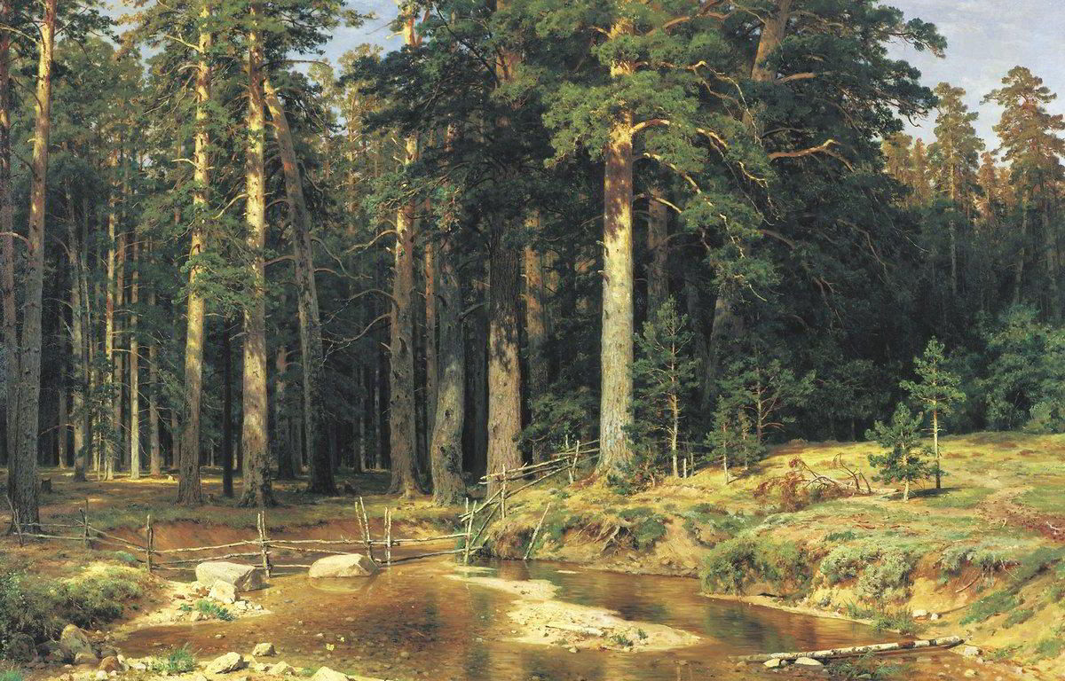 Mast Tree Grove by Ivan Shishkin-Russian Painting