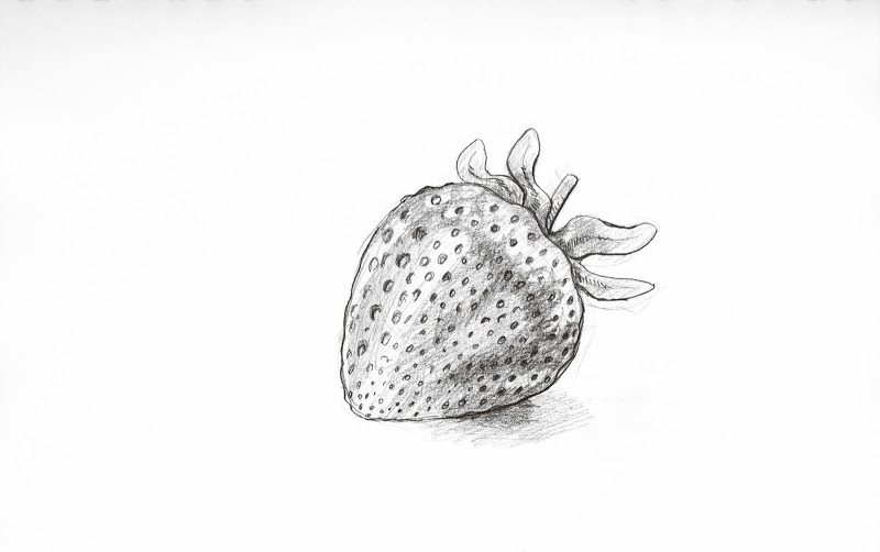 Strawberry by S. Rain Lawrence