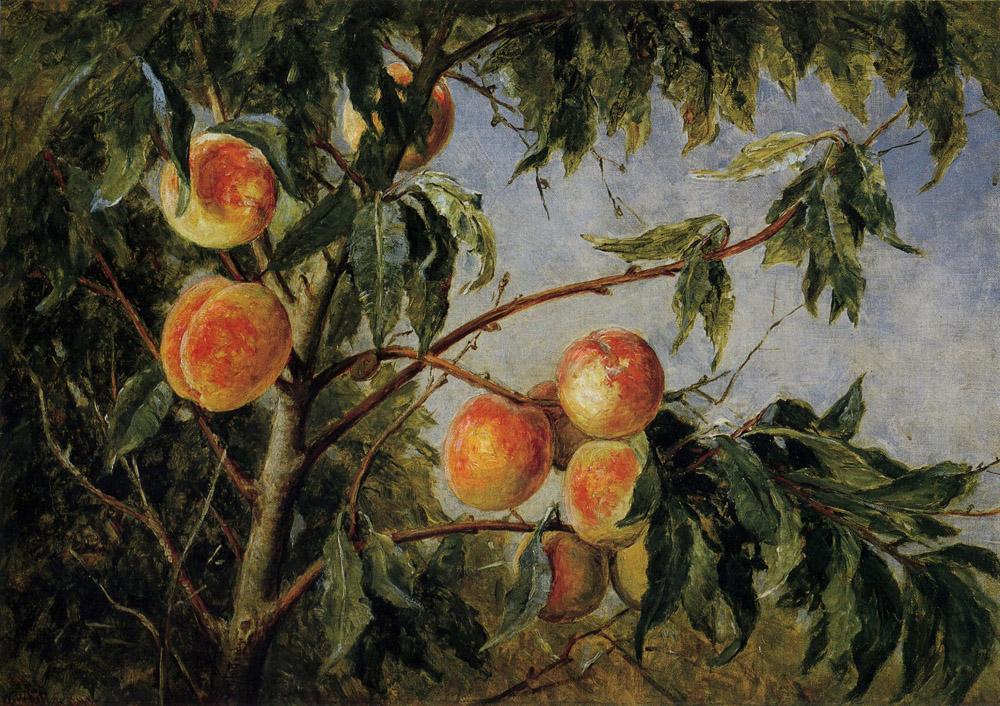 Peaches by Thomas Worthington Whittredge