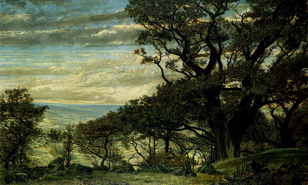 from Wharncliffe Crags Looking Towards The Derbyshire Moors by Archibald James Stuart Wortley