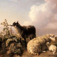 Les Moutons by Edmond Jean Baptiste Tschaggeny