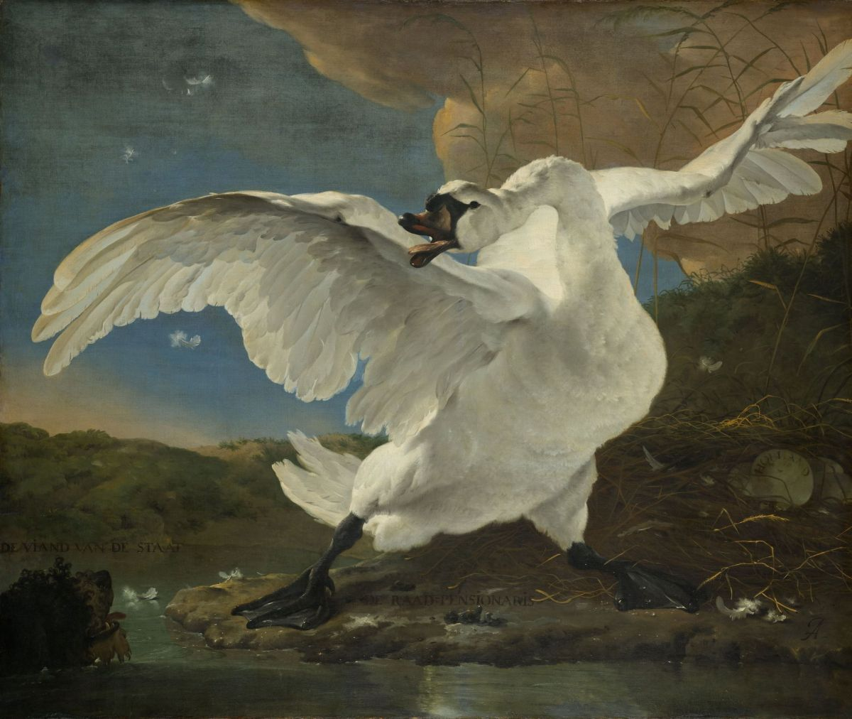 The Threatened Swan by Jan Asselyn