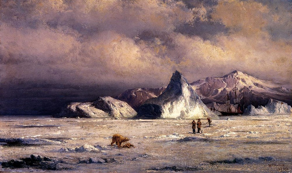 Arctic Invaders by William Bradford