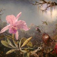 Cattelya Orchid and Three Brazilian Hummingbirds by Martin Johnson Heade