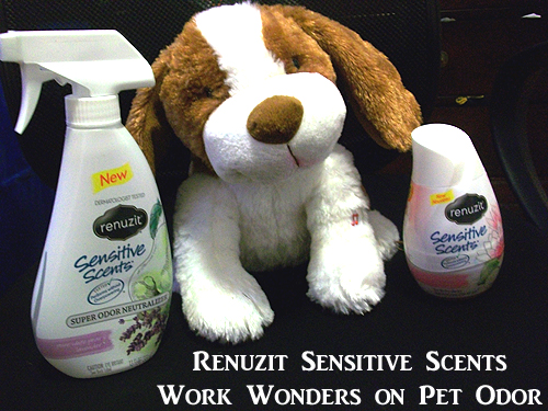 Renuzit Sensitive Scents Work Wonders on Pet Odors