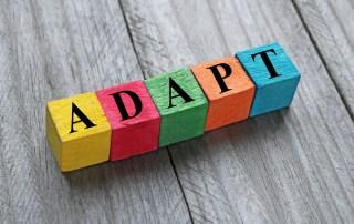 Building Blocks Spelling; Adapt