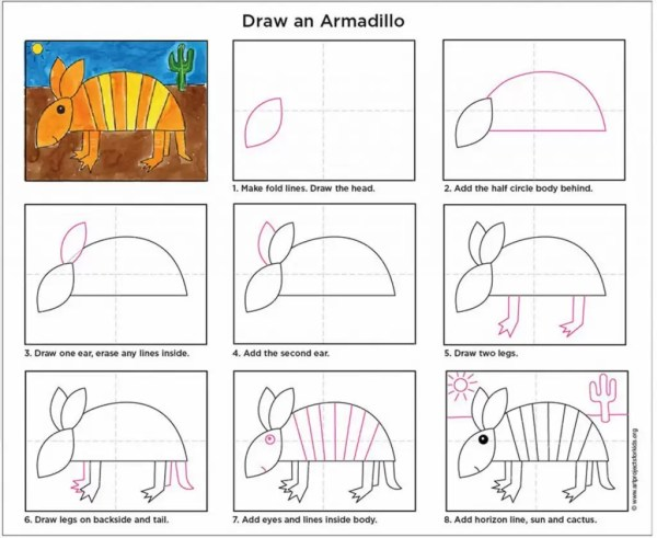 how to draw an armadillo # 8