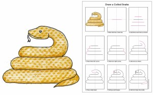 snake drawing draw coiled texture step simple drawings rattlesnake diagram animal projects way crayon try artprojectsforkids getdrawings tutorial finish him
