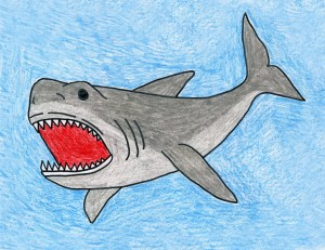 shark megalodon draw drawing projects pencil sharks easy drawings tooth painting cartoon kid mouth teeth artprojectsforkids animal read crayon learn
