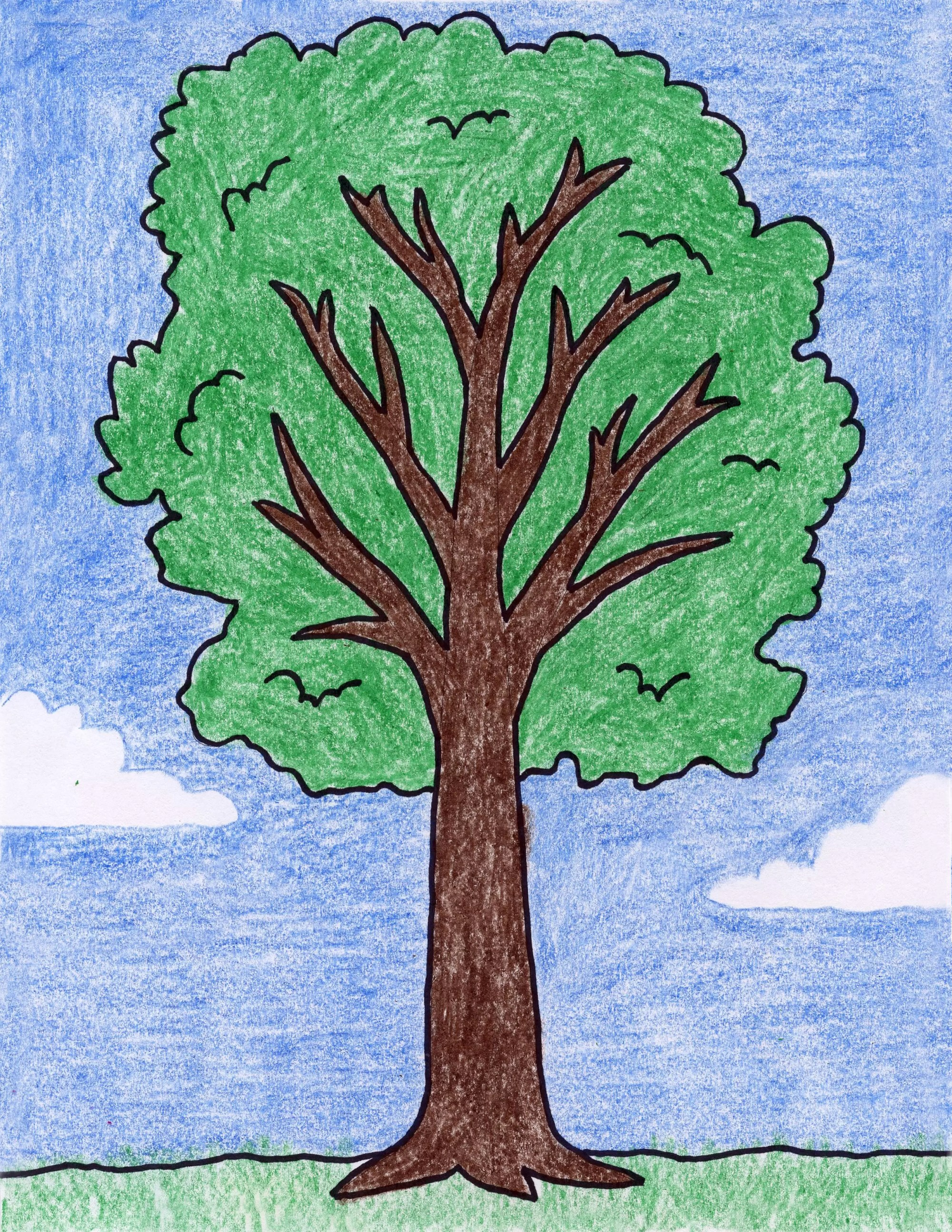 hight resolution of how to draw a tree