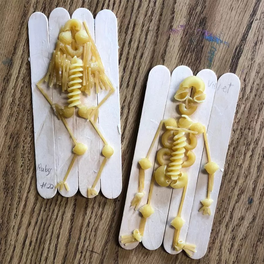 hight resolution of Pasta Skeleton · Art Projects for Kids