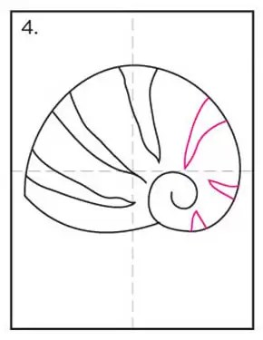 How To Draw A Seashell : seashell, Shell, Projects