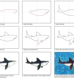 how to draw a shark [ 1313 x 1082 Pixel ]