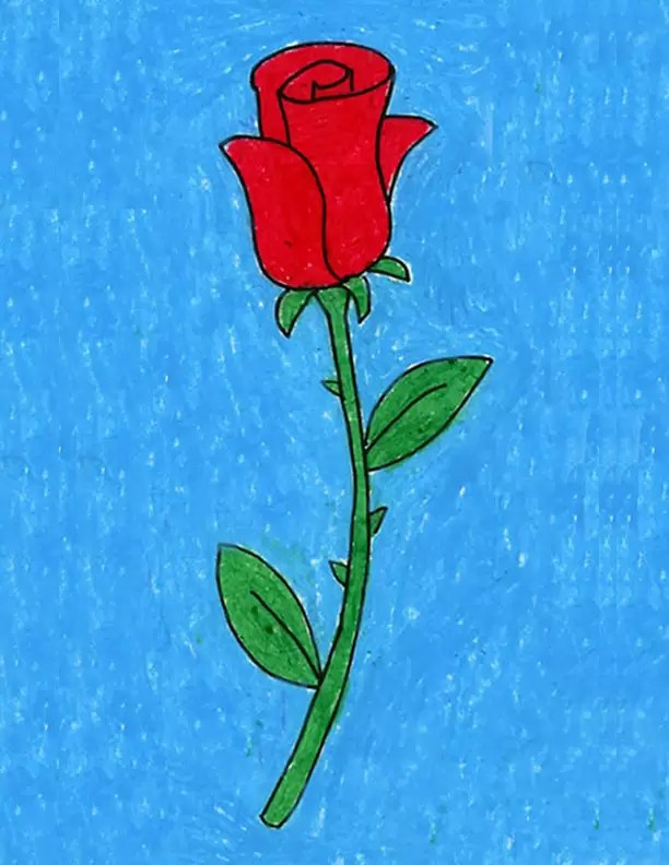 Pictures Of Roses To Draw : pictures, roses, Projects