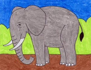 elephant draw projects