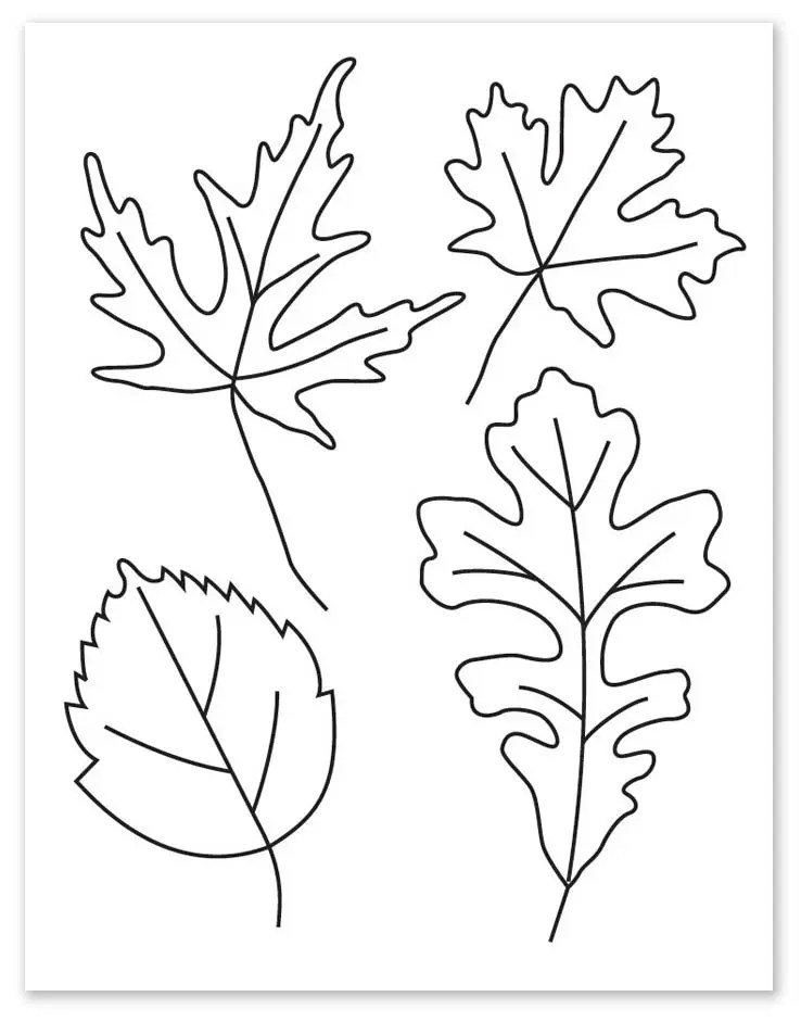 How To Draw Autumn Leaves : autumn, leaves, Leaves, Projects