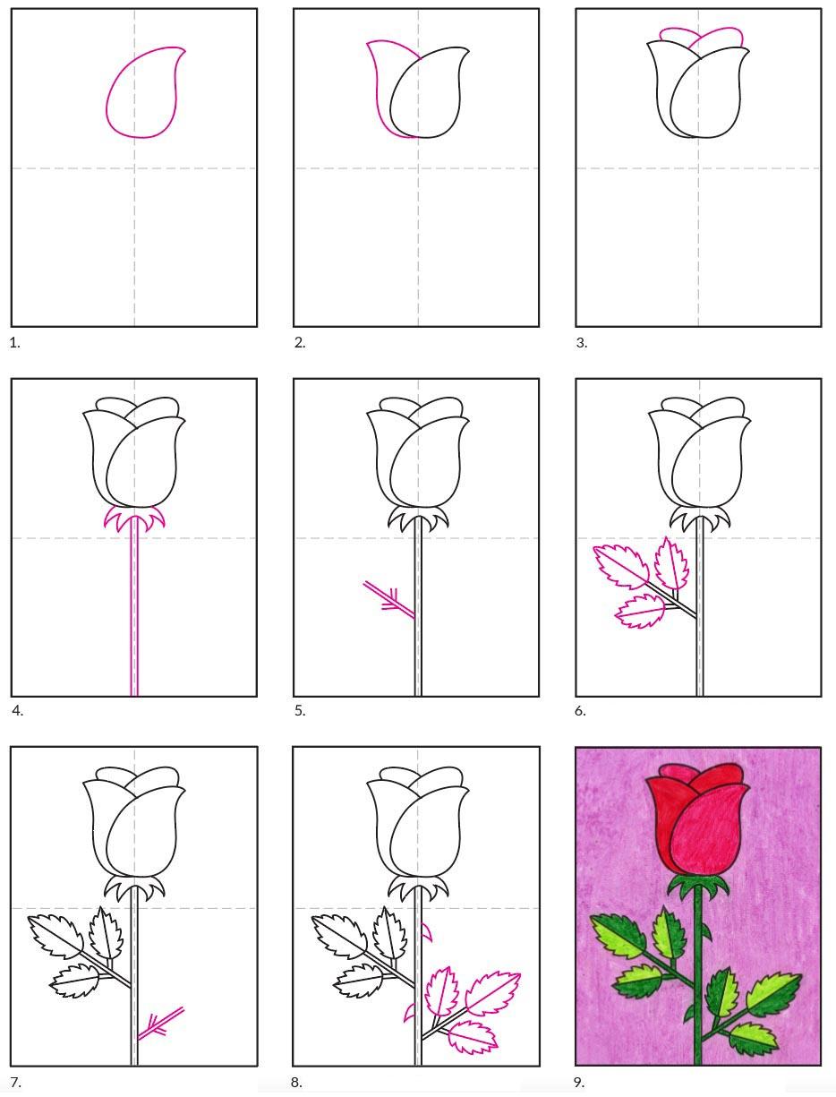 Rose Drawing Images : drawing, images, Drawing, Projects