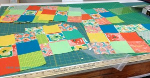 Sew What Quilts WIP