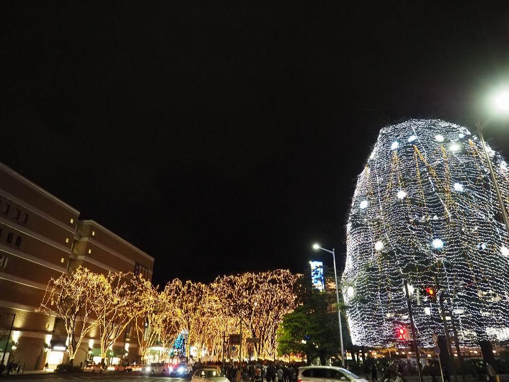 仙台光のページェントの風景写真