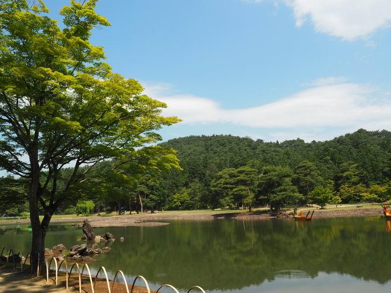 毛越寺の初夏の大泉が池の風景写真