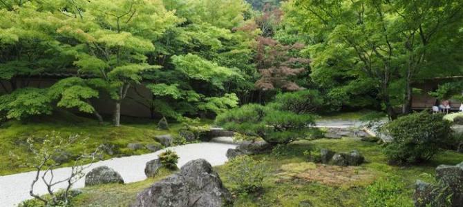 松島円通院の夏の風景写真