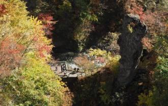 鳴子大橋から見た紅葉の写真