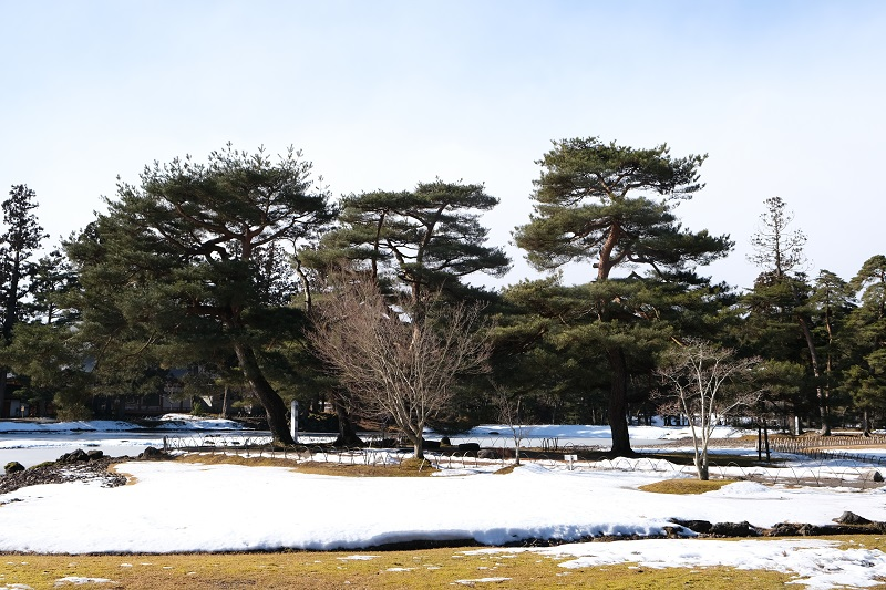 x-t3で撮影・平泉の観自在王院跡の冬の風景