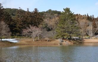 x-t3レビューと画質の評価奥州平泉観自在王院跡の風景写真