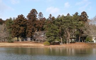 xt3レビューが汁の評価 奥州平泉の風景写真